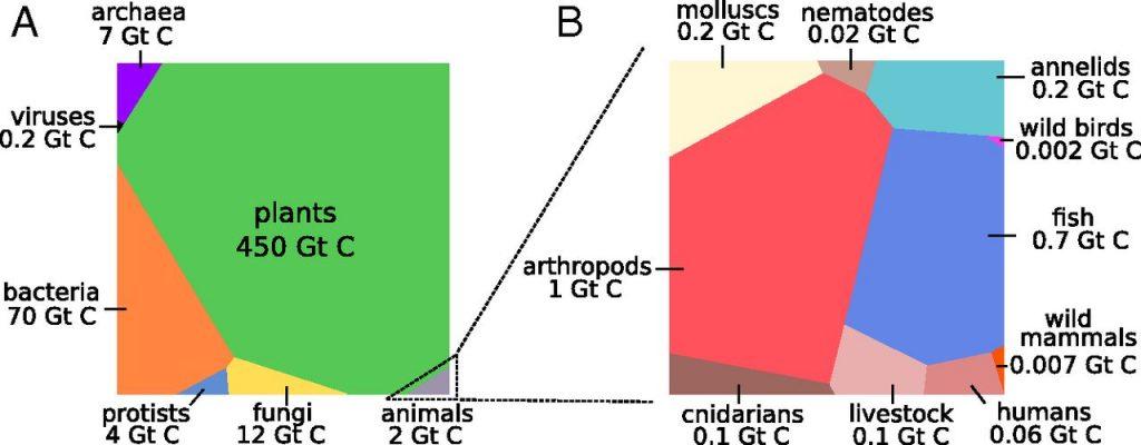 Le surpoids excessif de l'espèce humaine; Alain Adriaens; POUR; www.pour.press;