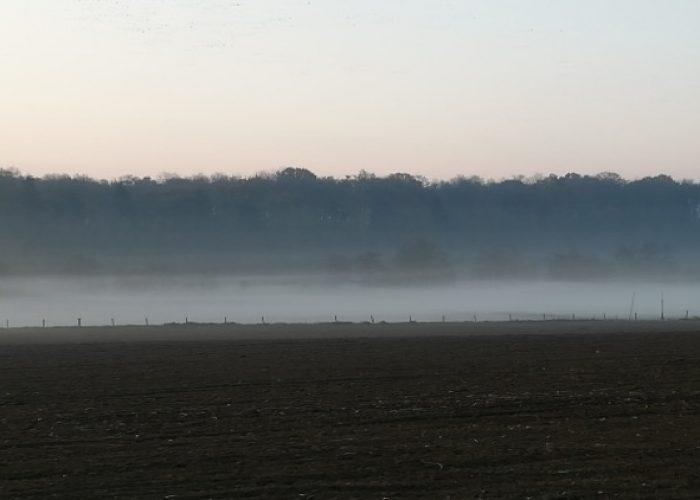 Brouillard médiatique et gilets jaunes