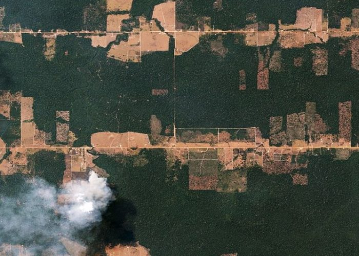 L'«Amazonie» brûle et le G7 nous enfume