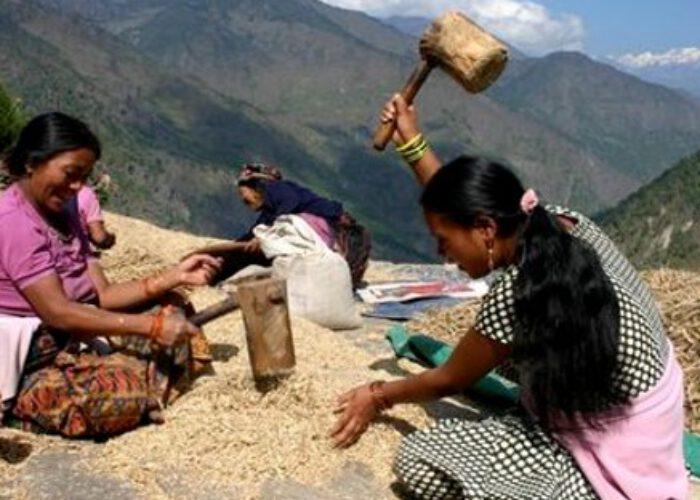 Défendre l'agriculture paysanne pour sauver le climat