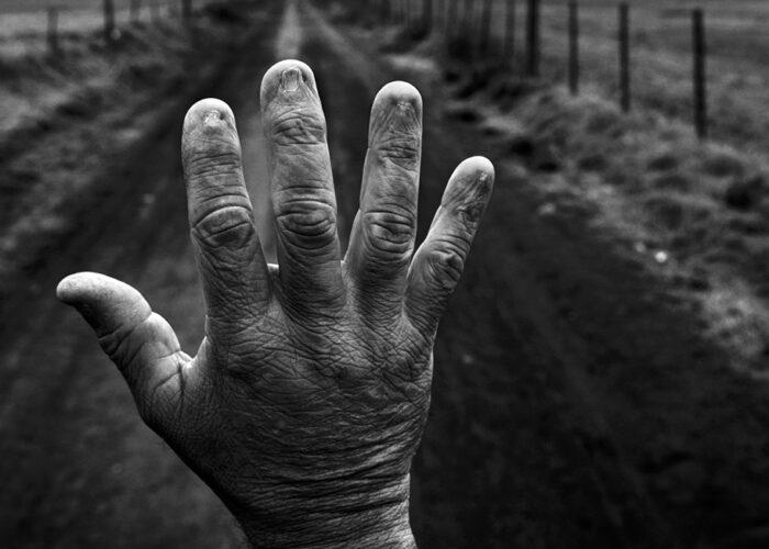 De l'Europe au Brésil, du Brésil à l'Europe : un cercle sans fin d'empoisonnement