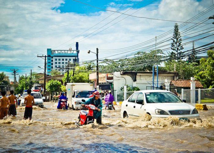 La stratégie de la résilience. Solution au désastre écologique?