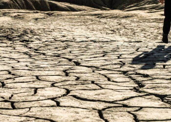 Quelle est la part des facteurs environnementaux dans la croissance des migrations?